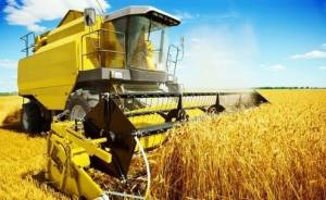 Agribusiness - IB.Investire in Brasile