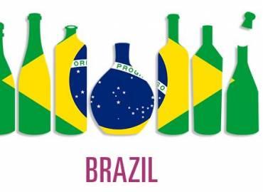 Investire in Brasile – Progetto Vino: Risultati 2017 e Prospettive 2018/19