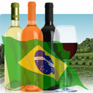 Export Vino – Opportunità di Business in Brasile