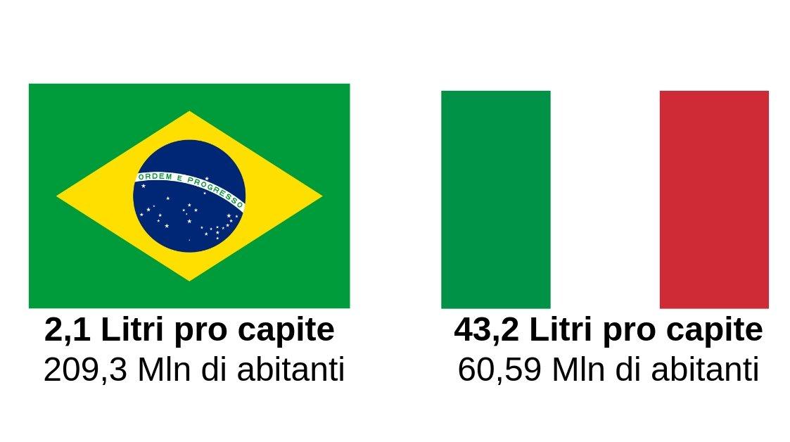 Export Vino: perché puntare sul Mercato brasiliano? Investire in Brasile
