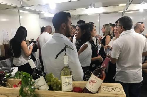 Italian Vinhos IB Investire in Brasile